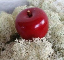 Äpple/tråd mörkröd 45mm